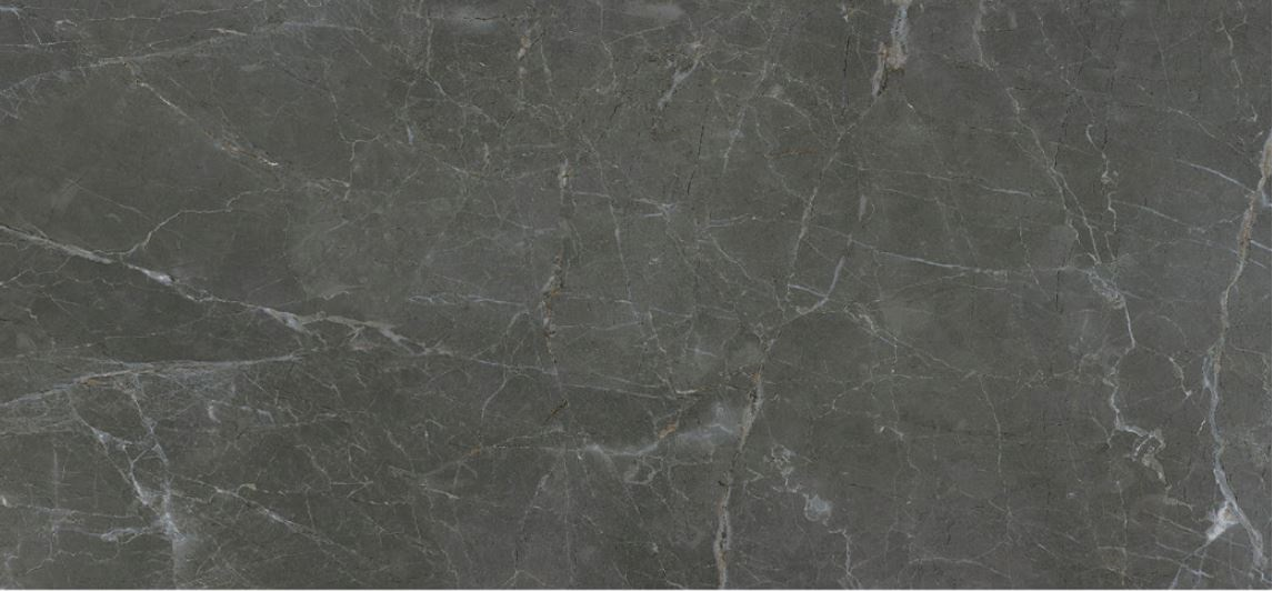 image/catalog/product_series_tiles/2262/PALACE_SLATE_1.jpg